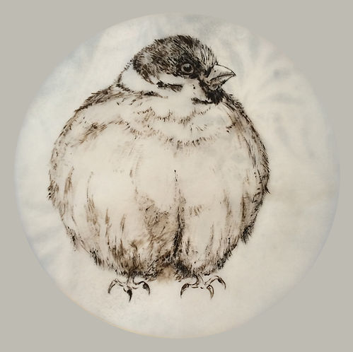 #13, Fluffed Up / Aufgeplustert, a drawing by Bärbel Thiel