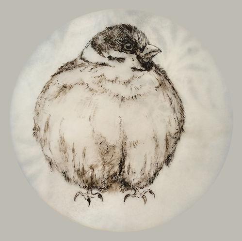#13, Fluffed Up / Aufgeplustert, a drawing by Bärbel Thiel
