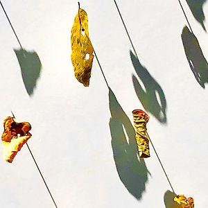 Locust Leaf Series 3 by Mimi Czajka Graminski
