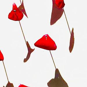 Petal Series: Geranium by Mimi Czajka Graminski