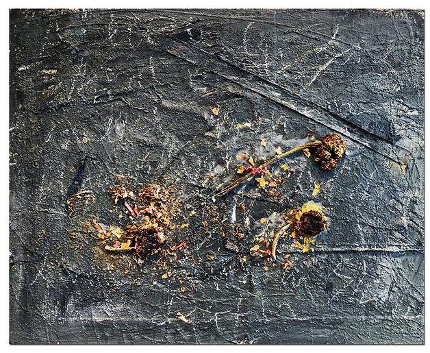 Wastelands by Ilse Schreiber-Noll.jpg