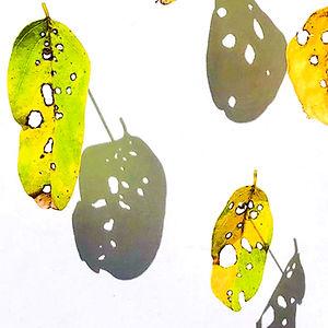 Locust Leaf Series 2 by Mimi Czajka Graminski