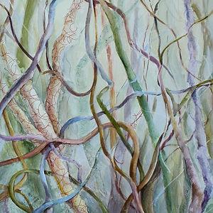 Vines by Cindy Sacks
