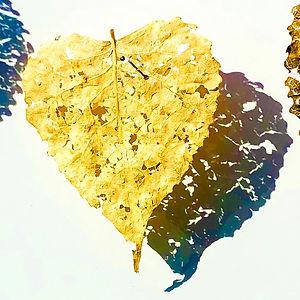 Heart Leaf by Mimi Czajka Graminski