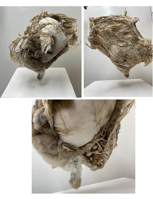 Partus, a sculpture by Ceci Cole McInturff