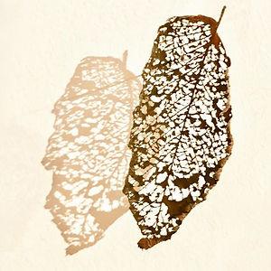 Lace Leaves Triptych by Mimi Czajka Graminski