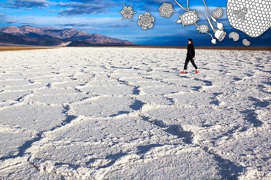 Salt Flat and Hexagons from The Desert Walk Series, an art print by 제뉴어리 조 윤 - January Yoon Cho