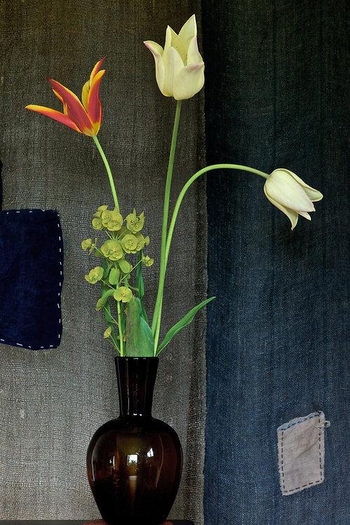 Tulips & Mottainai, a photograph by Dustan Osborn