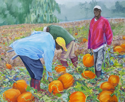 Pumpkin patch, a painting by Barbara Masterson