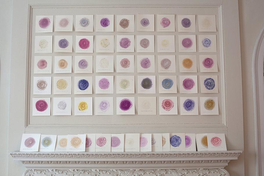 Wave Hill Flower Diary (45 drawings) bt Linda Stillman