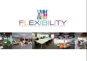 Catalog Flexibility Cover.png