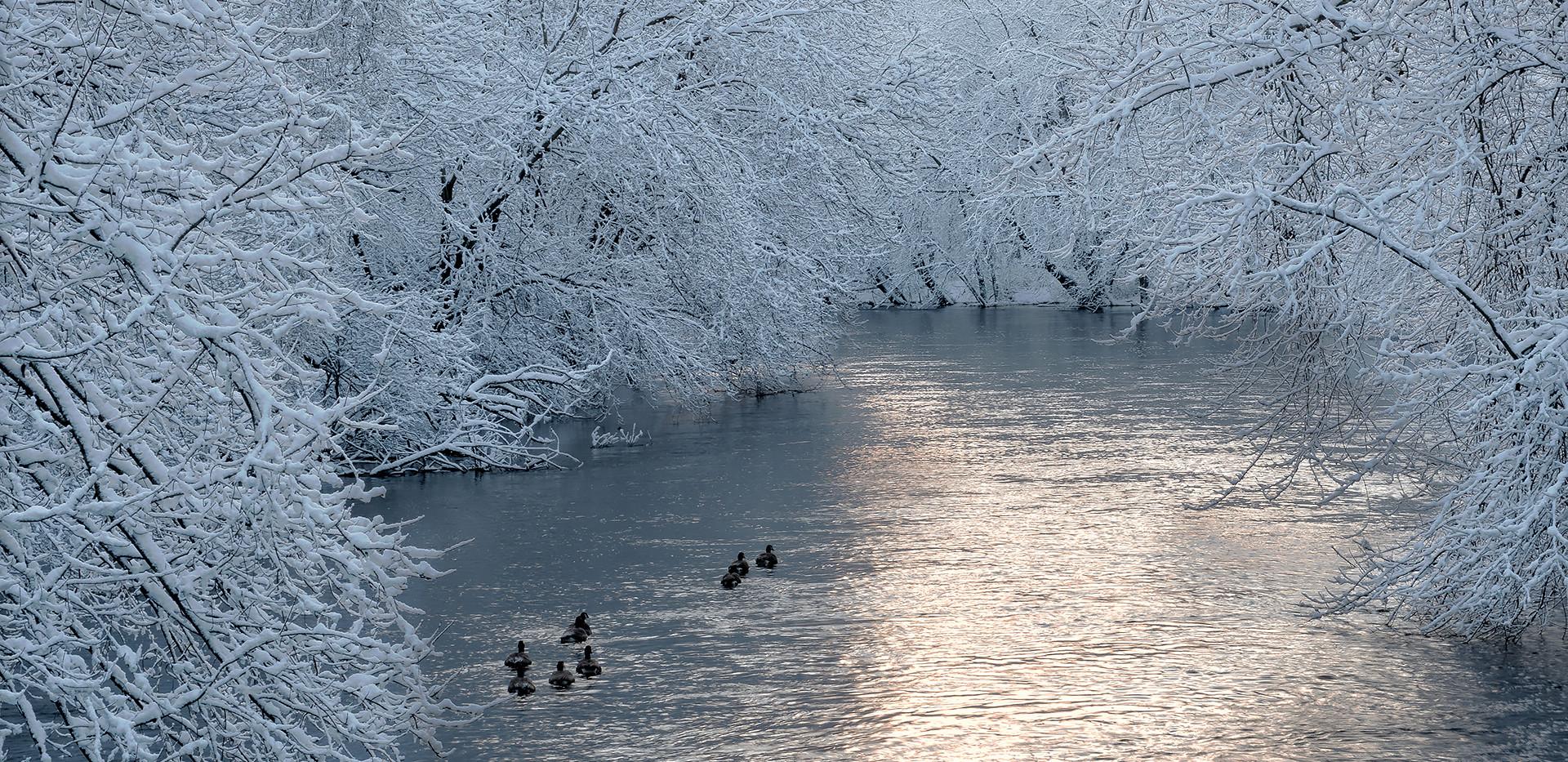 Charles River Paddle