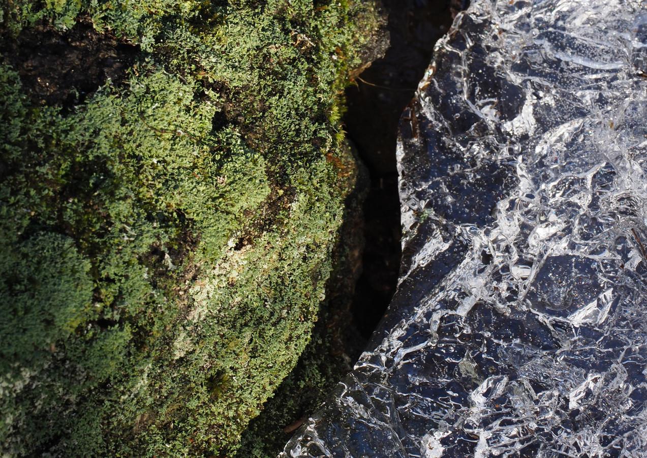 Icy Edge
