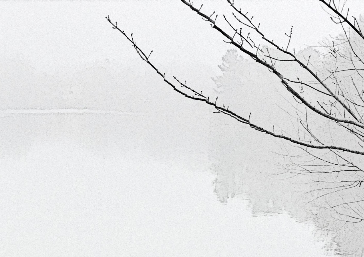Crystal Lake in Fog with Ducks