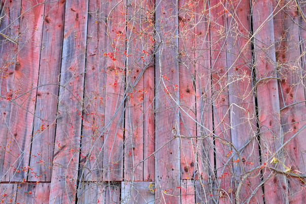 Barn Detail, Windsor, CT