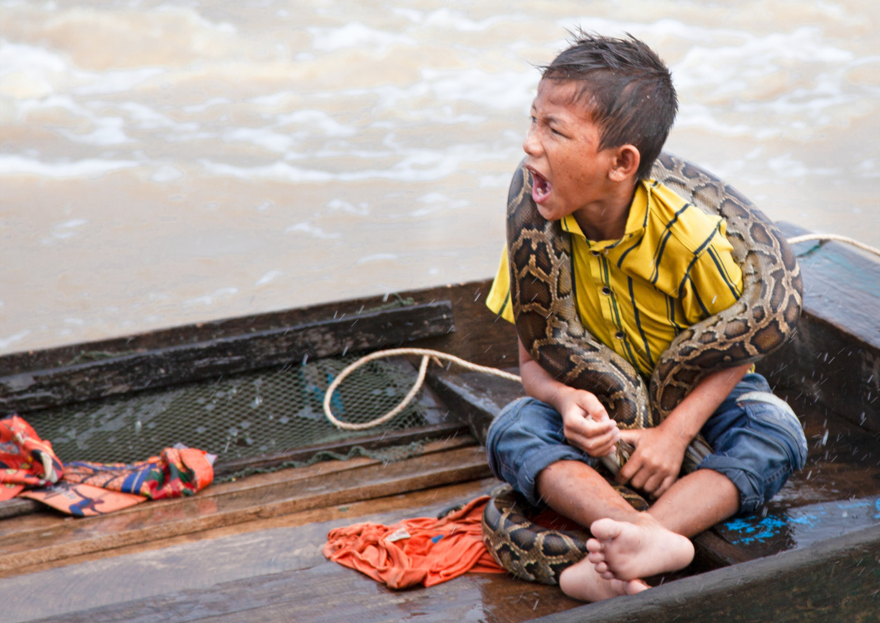 Cambodian Boy With Python