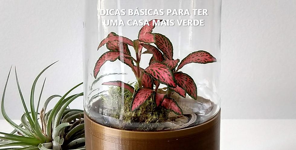 E-book Ateliê Recul