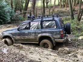 Muddy Path