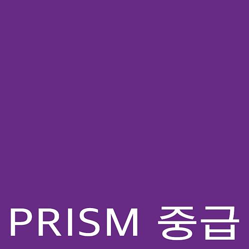 """""""PRISM 중급"""""""