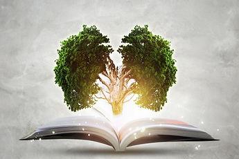 tree_book_01.jpg