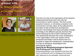 Tree Architecture and Morphophysiology