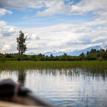 Wetland Lake.jpg