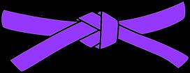 purple_belt.png