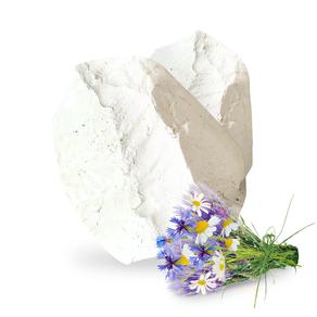 Кусочек мела – история возникновения породы
