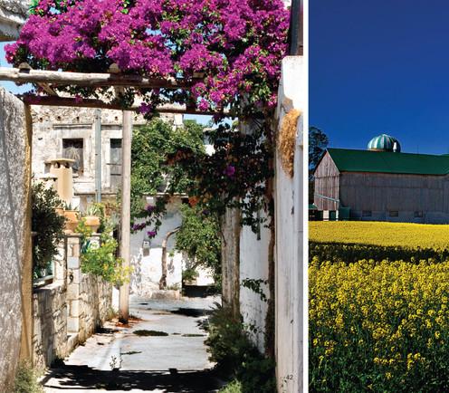 Courtyard, Uruguay, Algarve Laneway, Portugal