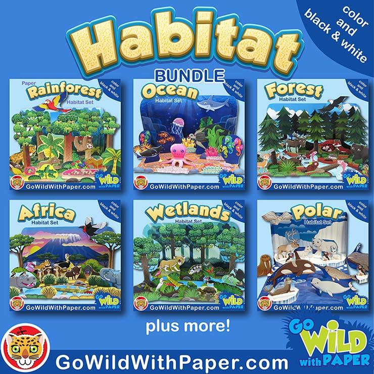 Animal Habitat Diorama Bundle