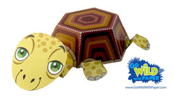 Turtle Paper Model