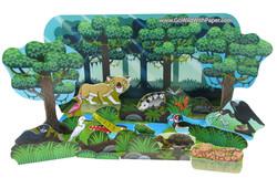 Wetlands Diorama