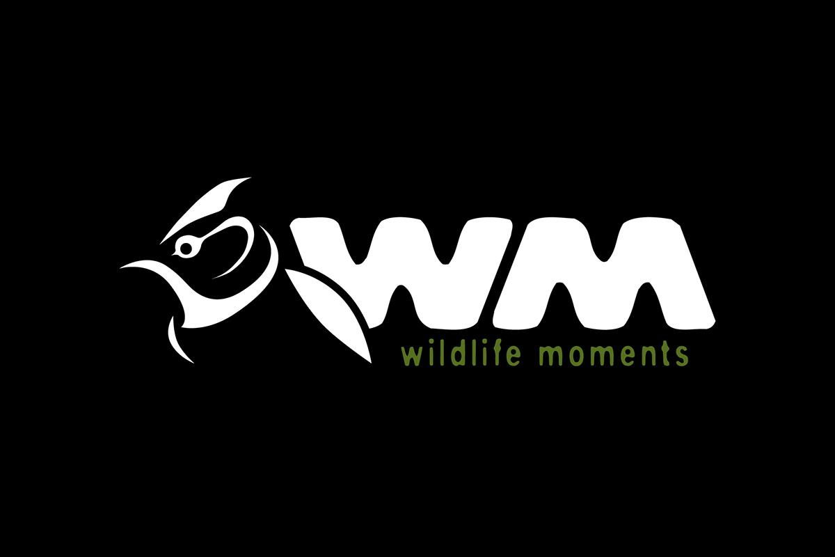 Wildlife Moments
