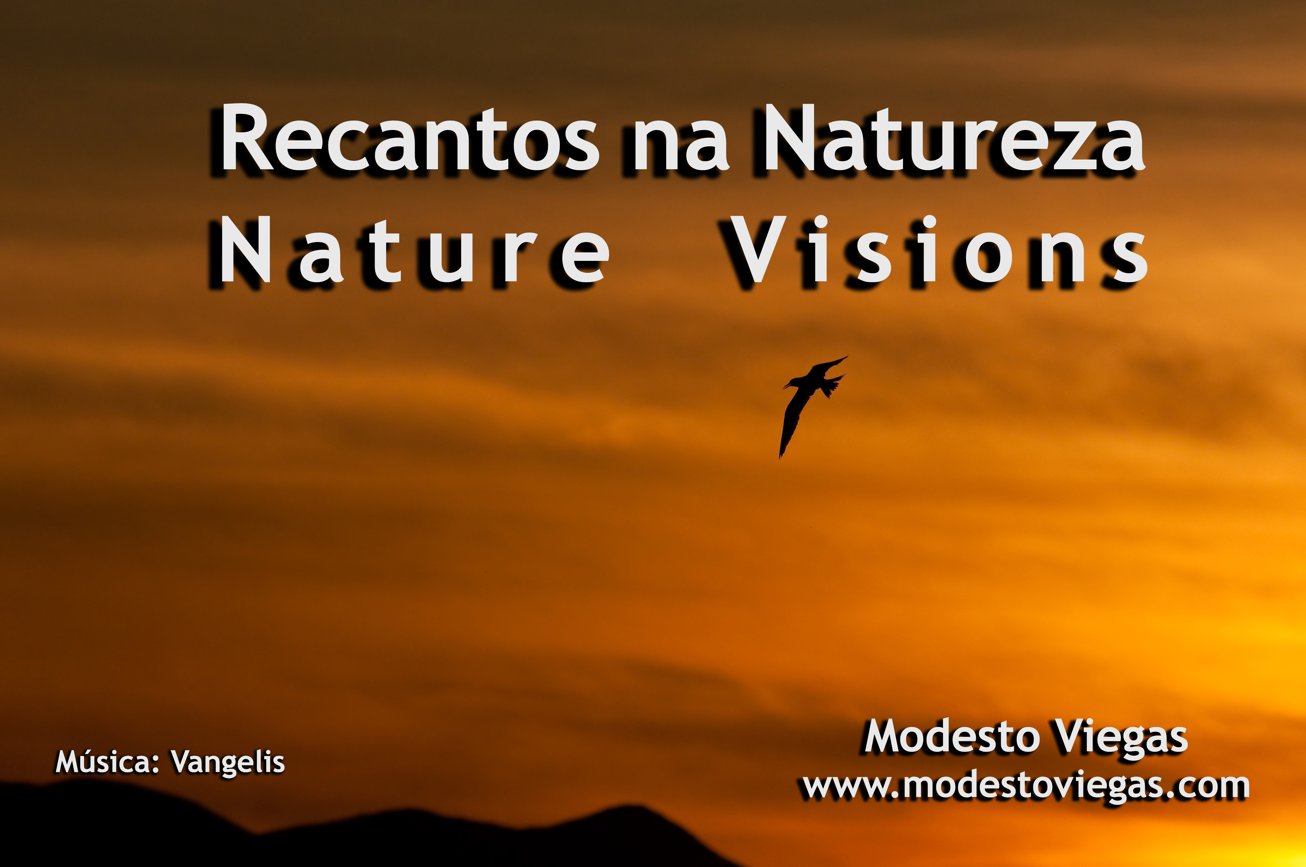 Nature Visions
