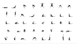 當年跟著Sri K. Pattabhi Jois一起練習Ashtanga yoga的他們,24年後在哪裡呢?