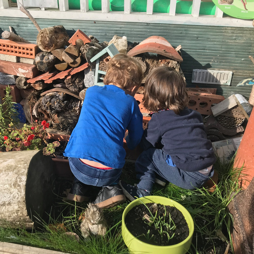 Mad Hatters Bug Hotel with boys rescuing