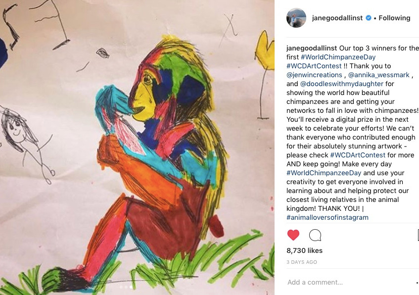 Notification of winning the first World Chimpanzee Day Art Contest on Instagram on 14th July 2018
