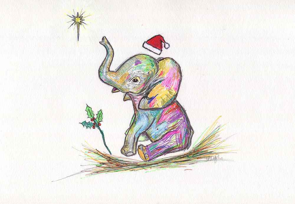 Baby Elephant with trunk up pointing at a star whilst wearing a Christmas hat. Holly at it's feet.
