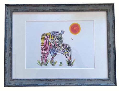 The Grevy's Zebras