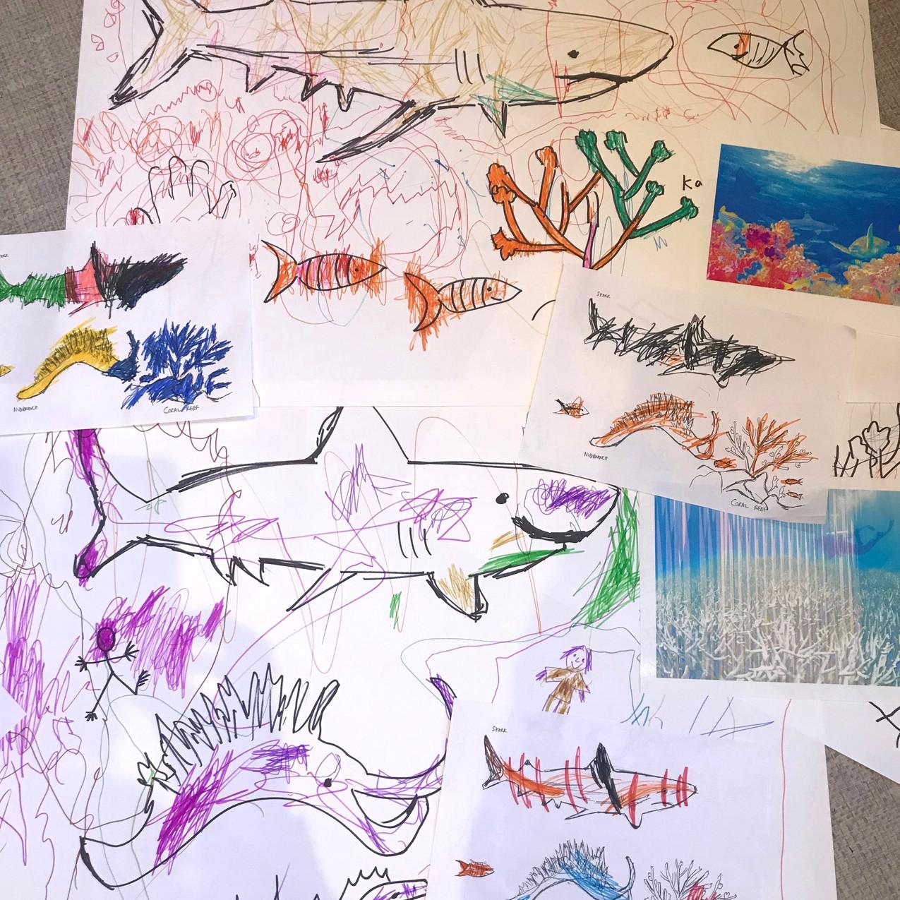 Coral Reef Conservation - Sharks & Nudib