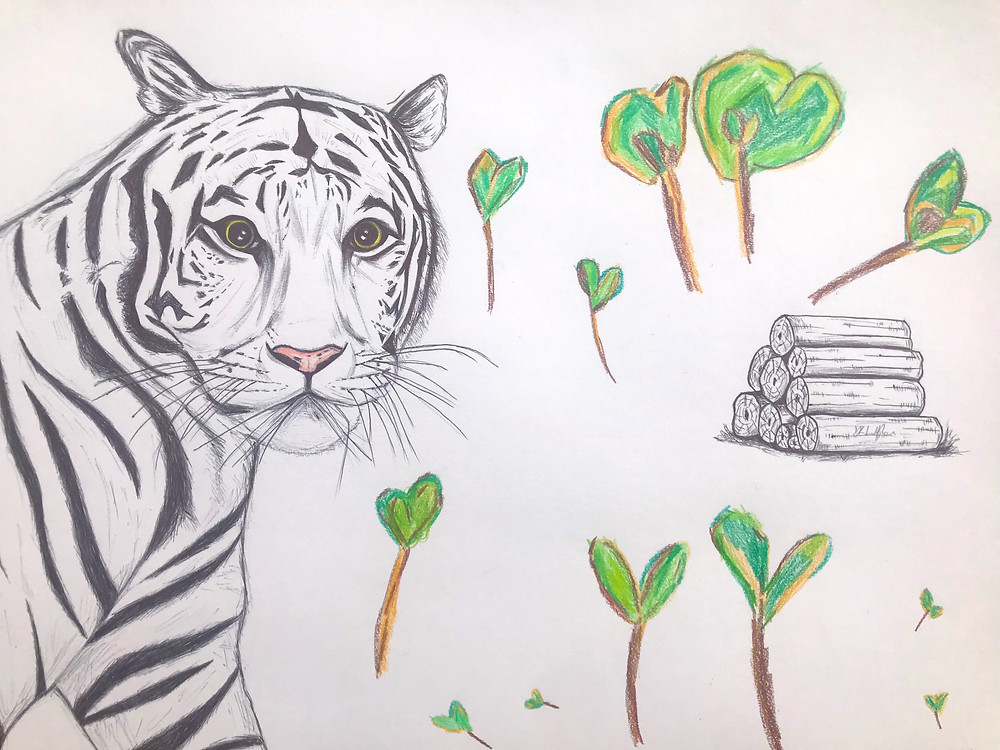 Tiger surrounded by heart trees and a pile of logging