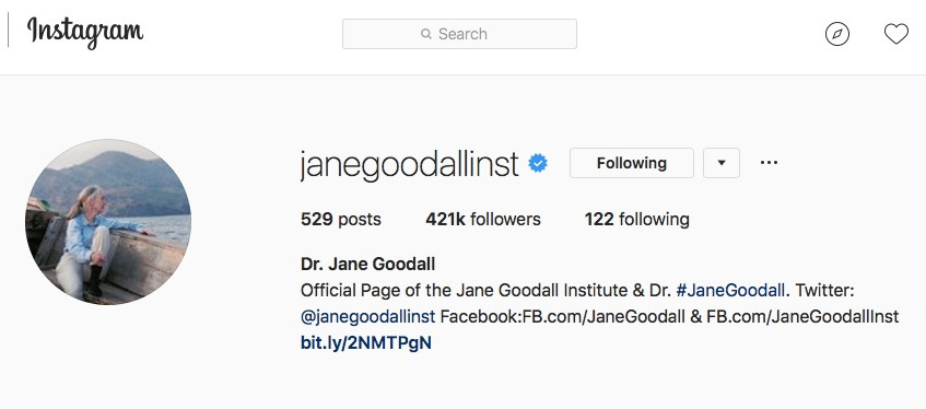 Janegoodallinst Instagram account depicting the current number of followers - 421,000 - which rises every day