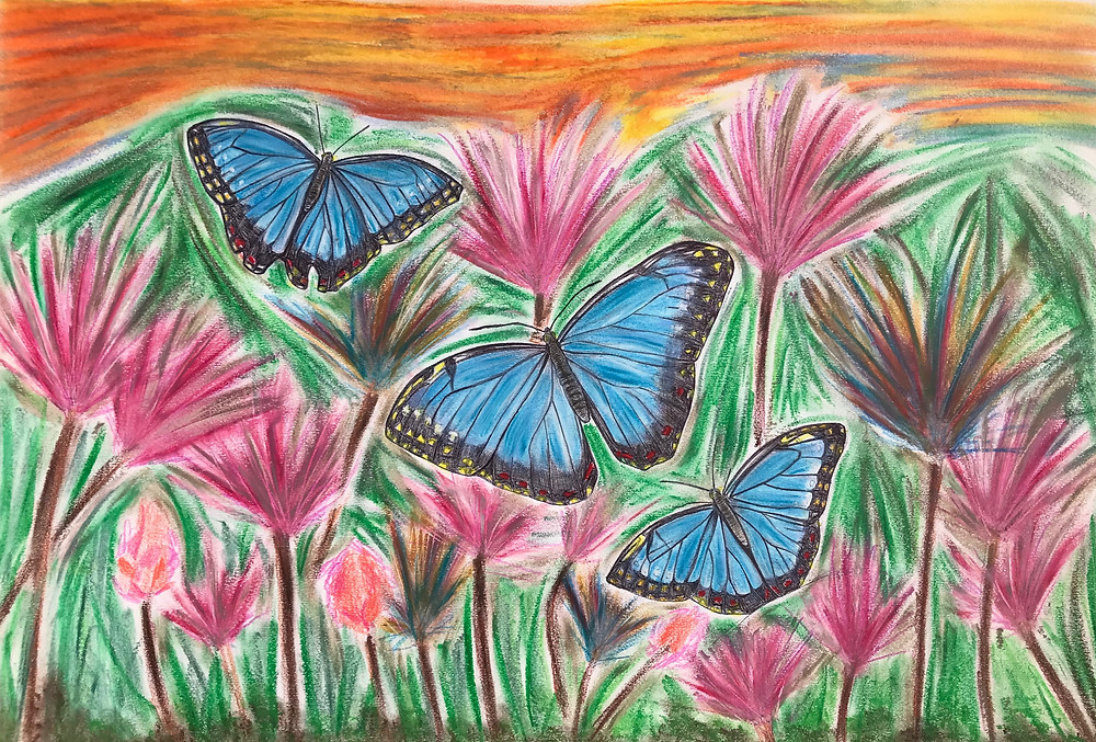 Doodle of Blue Morphos Butterflies with pink flowers and orange sky background