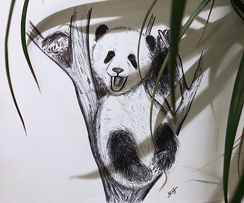 Frankie the Panda