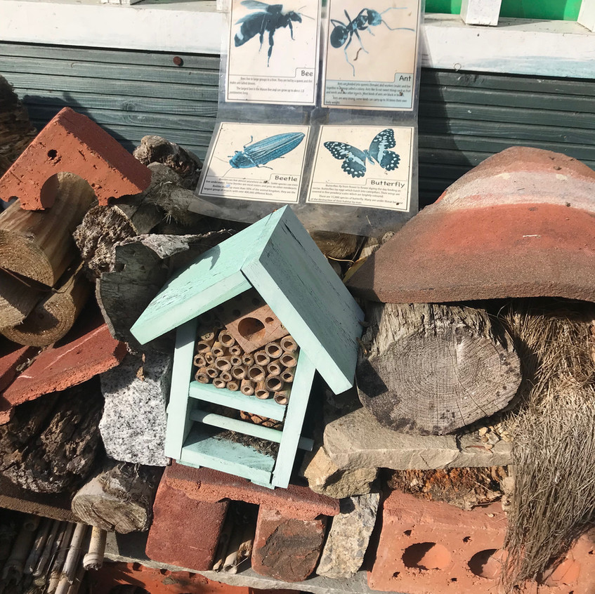 Mad Hatters Bug Hotel Sept_Oct 2018