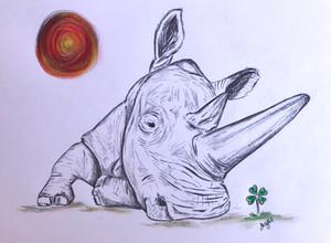 Fatu the Rhino