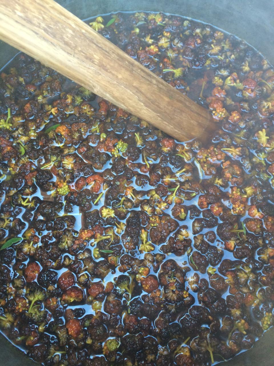 Q'olle flowers boiling to dye yarn a rich mustard tone (image courtesy of Dana Blair)