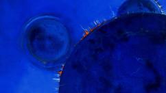a.d.Serie Uranos