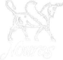 Noures Logo white.jpg