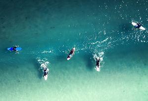 Surfers Line Up